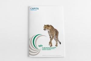 capita business travel brochure
